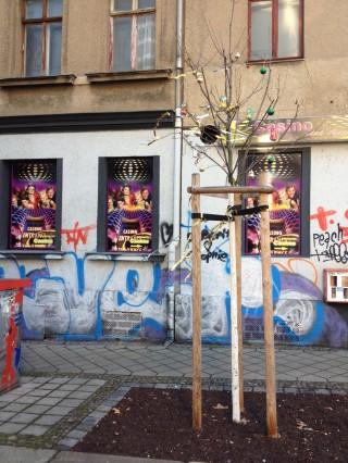 Bildinhalt: Allen ein schönes Fest | Weihnachten an der Georg-Schwarz-Straße/ Foto: S.Ruccius