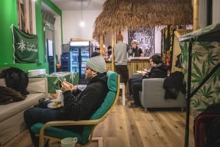 Bildinhalt: Neuer CBD-Store in der Georg-Schwarz-Straße  | Foto: CBD-Store